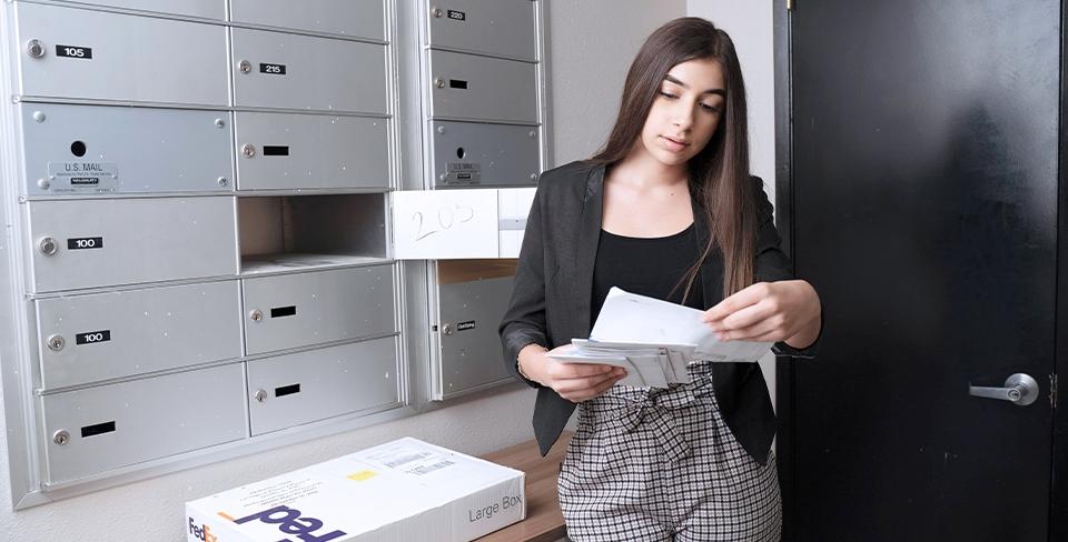 Professional Mailing
